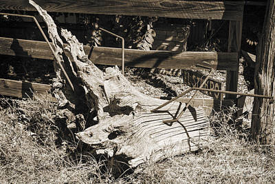 Photograph - Old Wooden Stump Wit Iron In Sepia 3010.01 by M K Miller