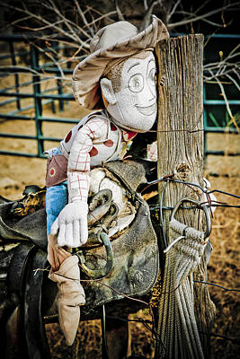 Horse Photograph - Old Woody Toy Story by Marilyn Hunt