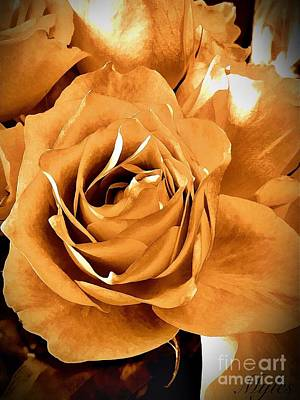 Photograph - Old World Roses  by Saundra Myles