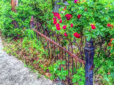 Photograph - Old Wrought Iron Gate 2 by Becky Lupe