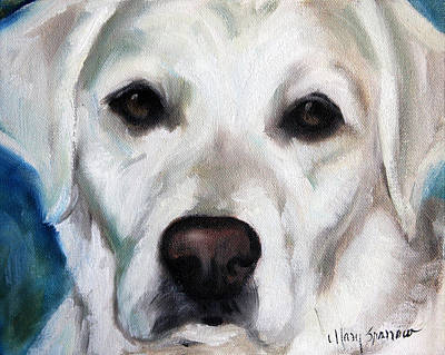 Labrador Painting - Old Yella by Mary Sparrow