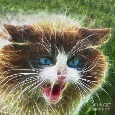 Digital Art - Ole Blue Eyes - Square Version by John Beck