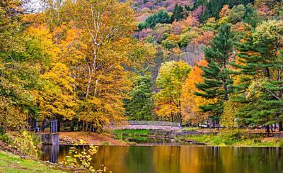 Bull Creek Photograph - Ole Bull State Park 2 by Steve Harrington