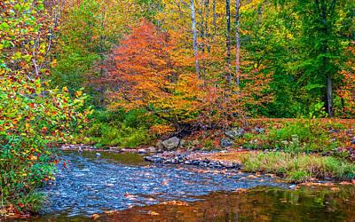 Bull Creek Photograph - Ole Bull State Park 4 by Steve Harrington