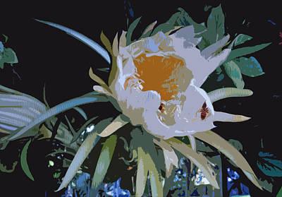 Photograph - Oleander by John Schneider