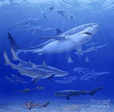Oligocene Sea Art Print by Chase Studio