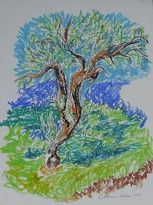 Olive Tree In Fall Art Print