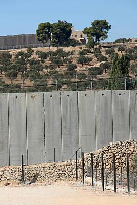 Olive Trees Goes To Jerusalem Original by Munir Alawi