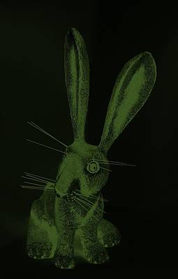 Photograph - Olive Green New Mexico Rabbit by Rob Hans