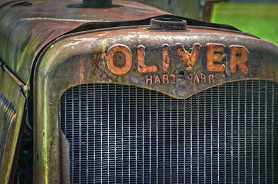 Photograph - Oliver by Ken Smith