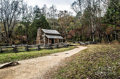 Art Print featuring the photograph Oliver's Log Cabin by Debbie Green