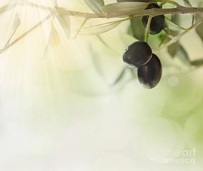 Olives Design Background Art Print by Mythja  Photography