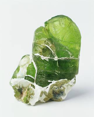 Peridot Photograph - Olivine Peridot Crystal by Dorling Kindersley/uig