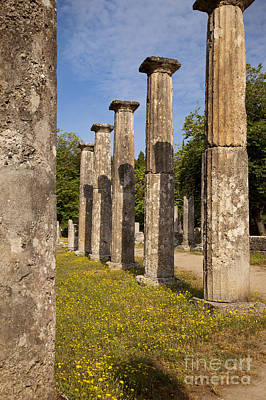 Photograph - Olympia Ruins by Brian Jannsen