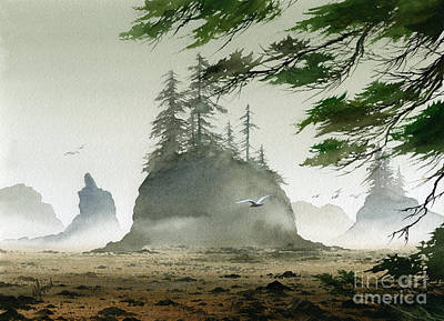 Olympic Coast Sea Stacks Art Print by James Williamson