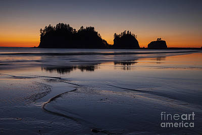 Olympic Peninsula Sunset Art Print