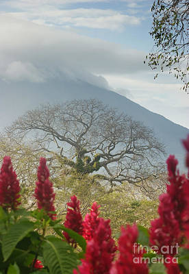 Art Print featuring the photograph Ometepe Island 1 by Rudi Prott