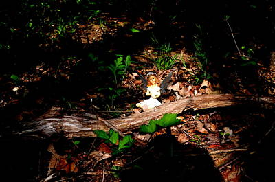 Photograph - Ominous Shadows Woodland Fairies by Linda Rae Cuthbertson