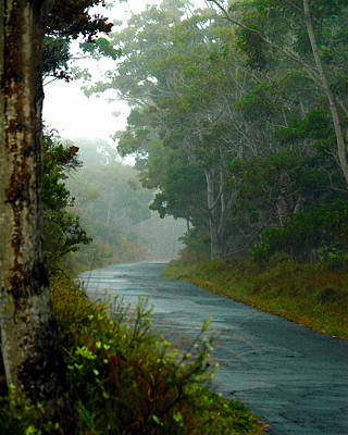 Art Print featuring the photograph On A Country Road by Lehua Pekelo-Stearns