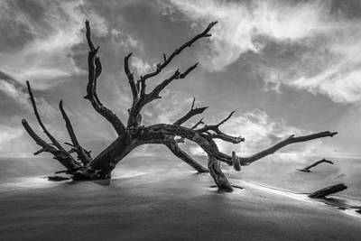 Driftwood Beach Fog Wall Art - Photograph - On A Misty Morning In Black And White by Debra and Dave Vanderlaan