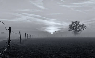 Pen Photograph - On A Misty Morning In March by Jacob Tuinenga