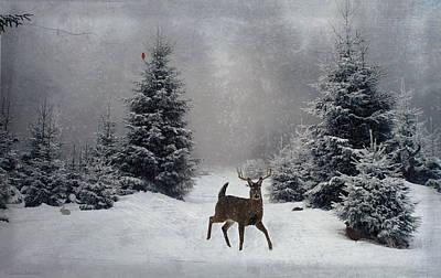 Digital Art - On a snowy evening by Lianne Schneider