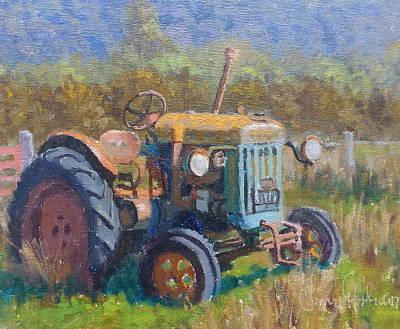 On A Westland Farm  Art Print by Terry Perham