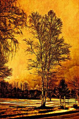 Back Roads Digital Art - On A Winter's Day by Steve Harrington