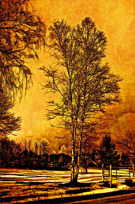 On A Winter's Day Art Print by Steve Harrington