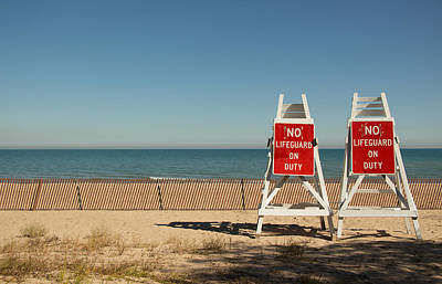Photograph - On Alert by Kathleen Scanlan
