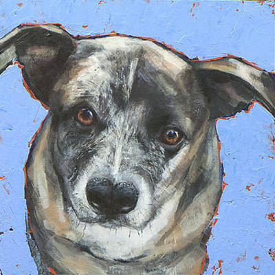 Cattle Dog Painting - On Blue by Mary Medrano