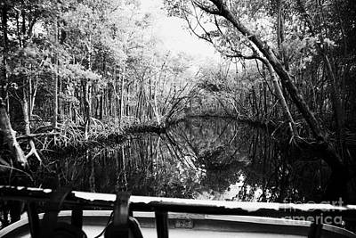 On Board An Airboat Ride Through A Mangrove Jungle In Everglades City Florida Everglades Usa  Art Print by Joe Fox