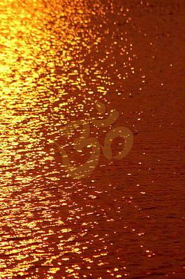 Photograph - On Golden Pond by Cindy Greenstein