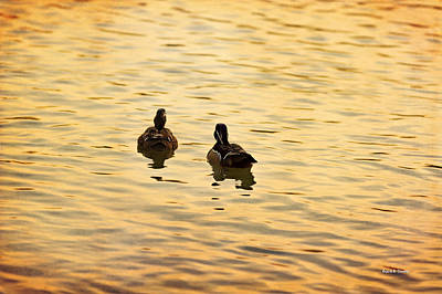 On Golden Pond Ducks Art Print by Angela A Stanton