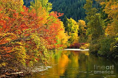 Photograph - On Nason Creek by Winston Rockwell
