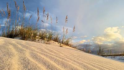Photograph - On Okaloosa Island by JC Findley