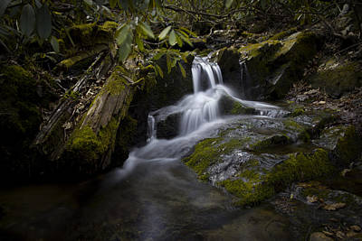 Photograph - On The Boone Fork Trail by Ben Shields