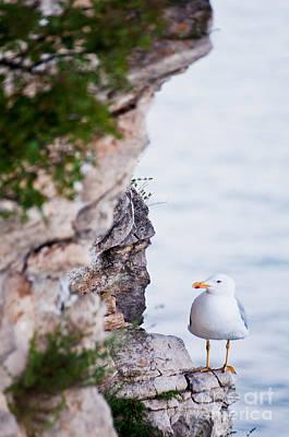 Photograph - On The Cliffs Of Rocca Di Manerba by Simona Ghidini