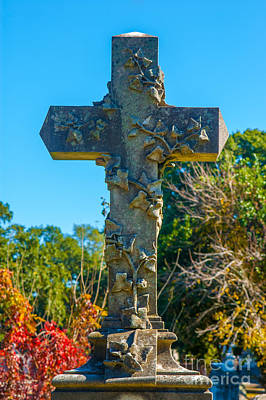 Photograph - On The Cross by Dale Powell