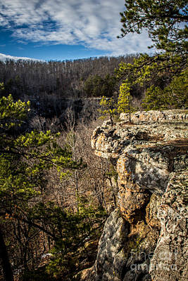 Photograph - On The Edge by Jim McCain