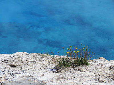 Photograph - On The Edge Of Blue by Laurel Powell