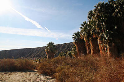 Photograph - On The Edge Of The San Andreas Fault by Amelia Painter