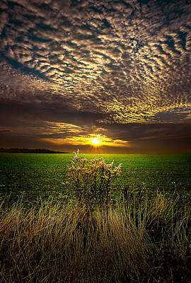 On The Edge Art Print by Phil Koch