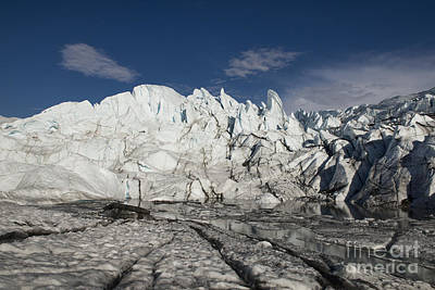 Photograph - On The Glacier by David Arment