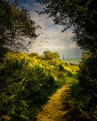 On The Path To The Sea Art Print by Chris Lord