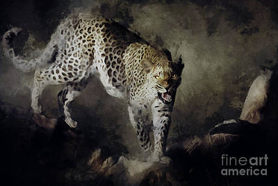 Fur Digital Art - On The Prowl by Shanina Conway