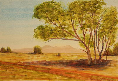 Painting - On The Road To Broken Hill Nsw Australia by Tim Mullaney