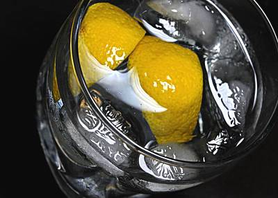 Photograph - On The Rocks With Lemon by Diana Angstadt