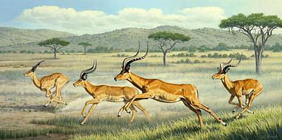 Impala Painting - On The Run -  Impala by Paul Krapf