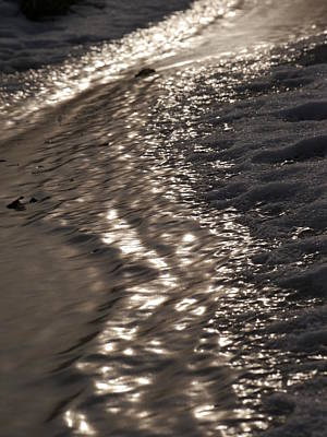 Photograph - On The Shore by Jane Ford